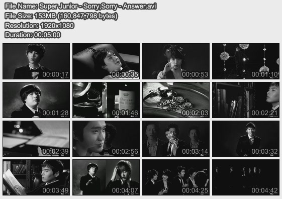 Super Junior - Sorry,Sorry - Answer