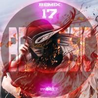 【Mixtape】VA-《Best Music Of Remix Vol.17》火爆登场~