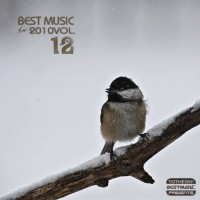 【Mixtape】VA-《Best Music Of 2010 Vol.12》(12月欧美精选)