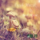 【Mixtape】VA-《Best Music of Fresh Muzik Vol.11》