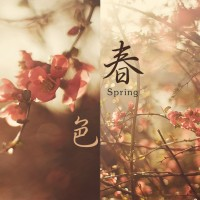 【Mixtape】VA-《The Color of Spring》[优美系]